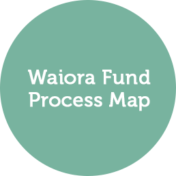Download Process Map