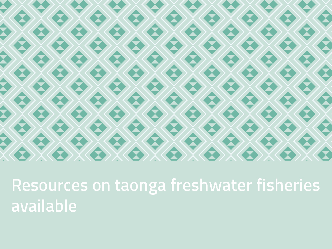 Resources on Aotearoa's taonga species now available for download