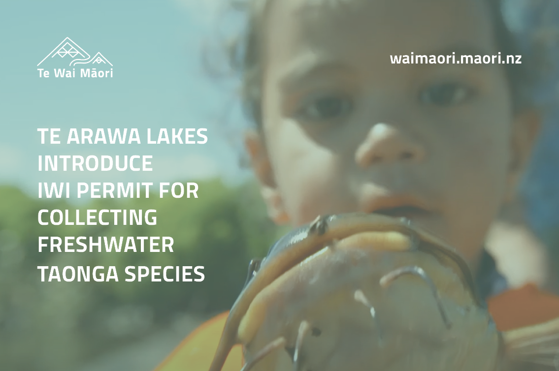 Te Arawa lakes introduce Iwi permit for collecting freshwater taonga species