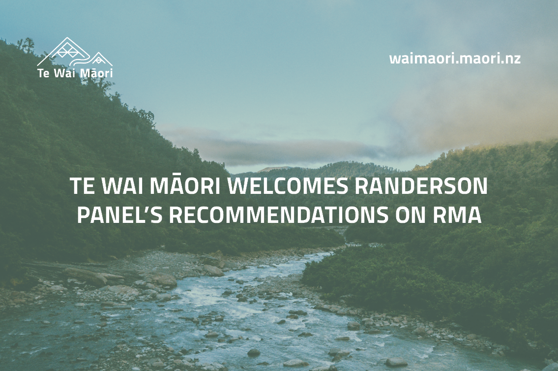 Te Wai Māori welcomes Randerson Panel's recommendations on RMA