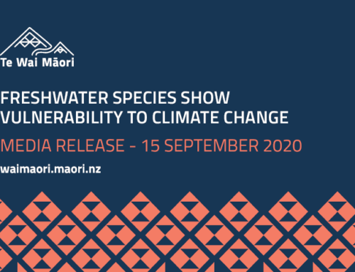 Media Release: Freshwater species show vulnerability to climate change