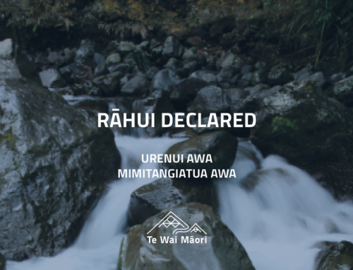 Rāhui placed on two Taranaki awa
