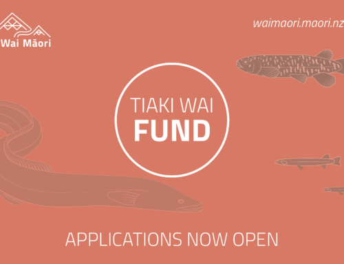 Apply now for our Tiaki Wai Fund